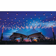 Zilotek String Lights 48 ft. - $10.00 off