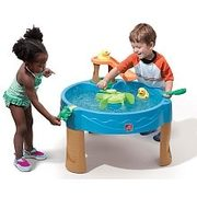 Duck Pond Water Table - $34.97 (50% off)