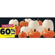 All Craft Pumpkins - 60% off