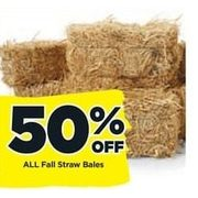 All Fall Straw Bales - 50% off