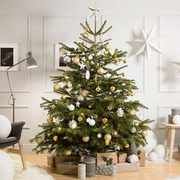 IKEA: Get a FREE $25.00 Coupon When You Buy a Christmas Tree for $25.00