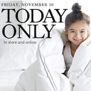 The Bay One-Day Sale: Save Up to $350 on Down Duvets and Pillows + 2% Cash Back